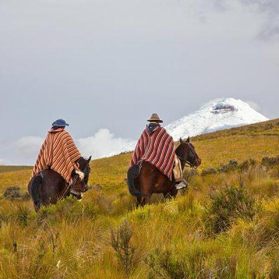 Magic Ecuador tour operator tours Ecuador Quito Andes Amazon Pacific Coast Galapagos movil 149